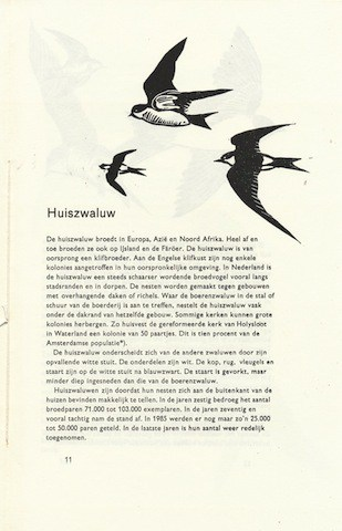 Zwaluw waarheen 2000T