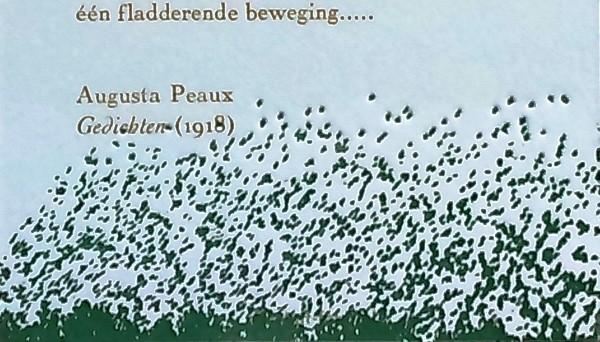 Augusta Peaux Poëziekaart 3 detail